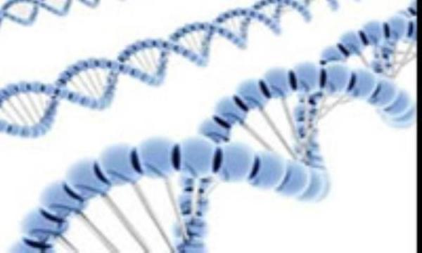 ژنتیک بر بلندای سده بیست و یکم